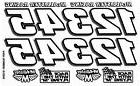 RC Car Decals, 1/10th, Racing Number, Sprints, Late Models,